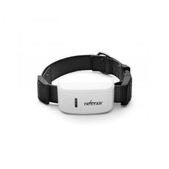 Zgarda TKSTAR, cu localizare GPS pentru animale, monitorizare in timp real, aplicație gratuită